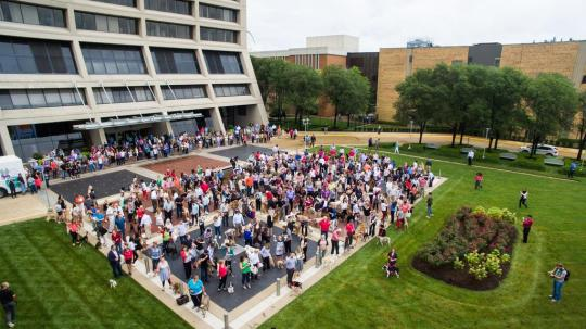 Aerial Photography for Purina pets at work world record setting!